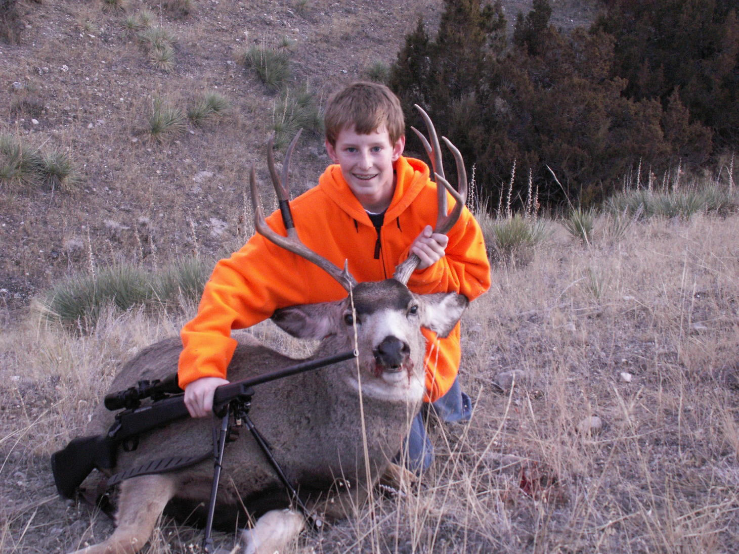 My Oldest son's first deer 4 point Mule deer Nov 2009