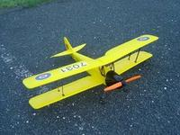 Name: tigermoth.jpg