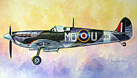 Name: blakeslee_spitfire_tw_2.jpg