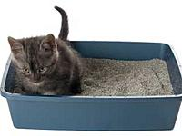 Name: litter-box.jpg