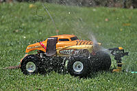 Name: Monster Mutt Biff res 003.jpg