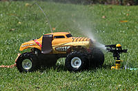 Name: Monster Mutt Biff res 019.jpg
