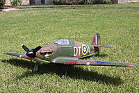 Name: BARRY'S HURRICANE (2).jpg