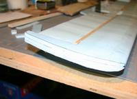 Name: 25_wing_tip.jpg