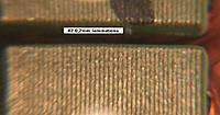 Name: 06_4108_lams_count.jpg