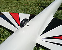 Name: Fox2m_belly.jpg