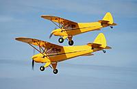 Name: Double Cub 1.jpg
