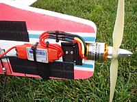 Name: Eagle3.jpg