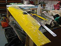 Name: DSC05504.jpg