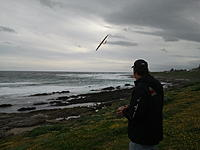 Name: Photo3046.jpg