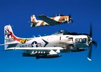 Name: Skyraider_USMC.jpg