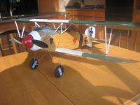 Name: albatros4.jpg