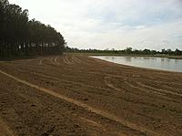 Name: IMG_0746.jpg
