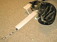 Name: WhirliSam2.jpg