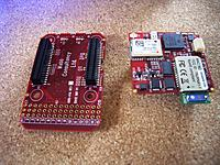 Name: IMGP5245.jpg