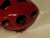 Name: 20130113_122636.jpg