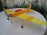 Name: Steve's low wing EA 1.jpg