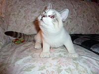 Name: P1000399.jpg