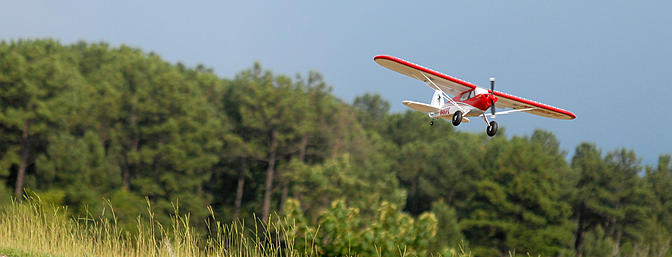 Sneaking up over the weeds on the far side of the runway.