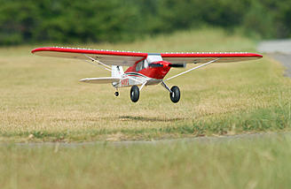 You're gonna see lots of pictures where it looks like the Sport Cub is just hovering inches off the grass!