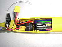 Name: DSC03853.jpg