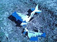 Name: pluma dead 117.jpg