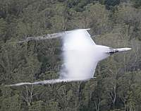 Name: 20100603raaf8490713_0038.jpg