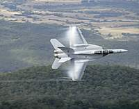 Name: 20100603raaf8490713_0085.jpg
