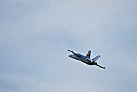 Name: DSC_0532.jpg