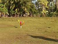 Name: PaganLaunch2.jpg