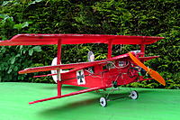 Name: Baby Baron.jpg