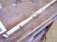 Name: Lym 14.jpg