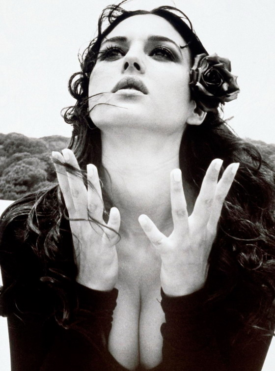 http://static.rcgroups.net/forums/attachments/2/2/4/8/2/1/a4215223-13-Monica-Bellucci-2011.jpg