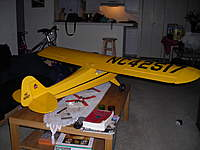 Name: Cub 034.jpg
