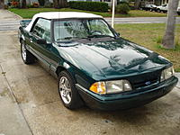 Name: mustang 007.jpg