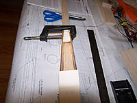 Name: 100_1113.jpg