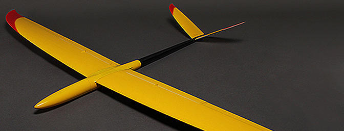Salangane - Performance Slope/EP Glider