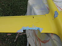 Name: Wompoo wing repair. 002.jpg