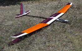 3.1 meters span ALES glider SparrowII