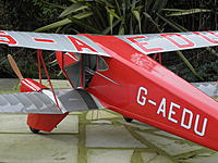 Name: Dragonfly 060.jpg
