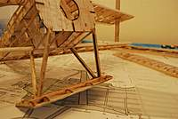 Name: DSC_5309 (Large).jpg