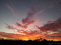Name: 20120729_172600.jpg