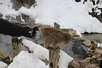 Name: IMG_0212.jpg