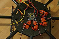 Name: OctoKong build 002.jpg