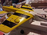 Name: Wing_smooth.jpg