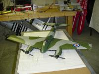 Name: DH88072007 005.jpg
