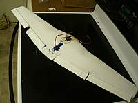 Name: wing_01.jpg