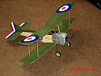 Name: Pup V2 - 14.jpg