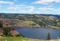 Name: lyle.jpg