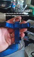 Name: 2012-09-16 17.39.13 edited.jpg
